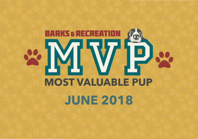 Barks & Recreation Most Valuable Pups (MVPs) — June 2018