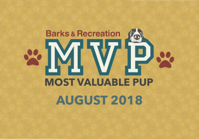 Barks & Recreation Most Valuable Pups (MVPs) — August 2018