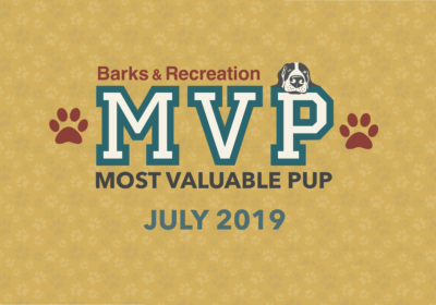 Barks & Recreation Most Valuable Pups (MVPs) — July 2019