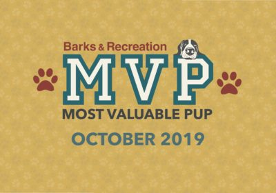 Barks & Recreation Most Valuable Pups (MVPs) — October 2019