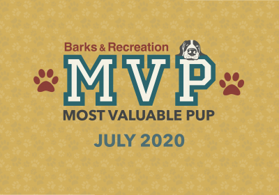 Barks & Recreation Most Valuable Pups (MVPs) — July 2020